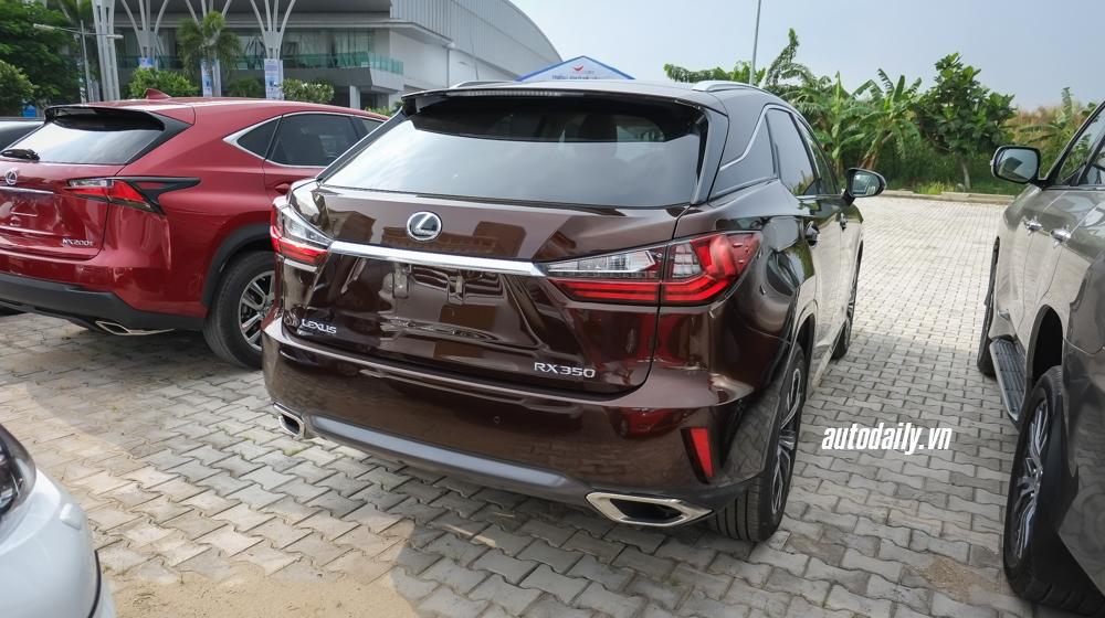Lexus_LX570_RX350 (13)-1.jpg