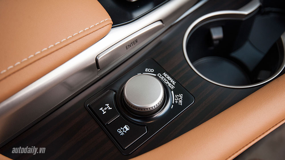 Lexus-RX-2016-50.jpg